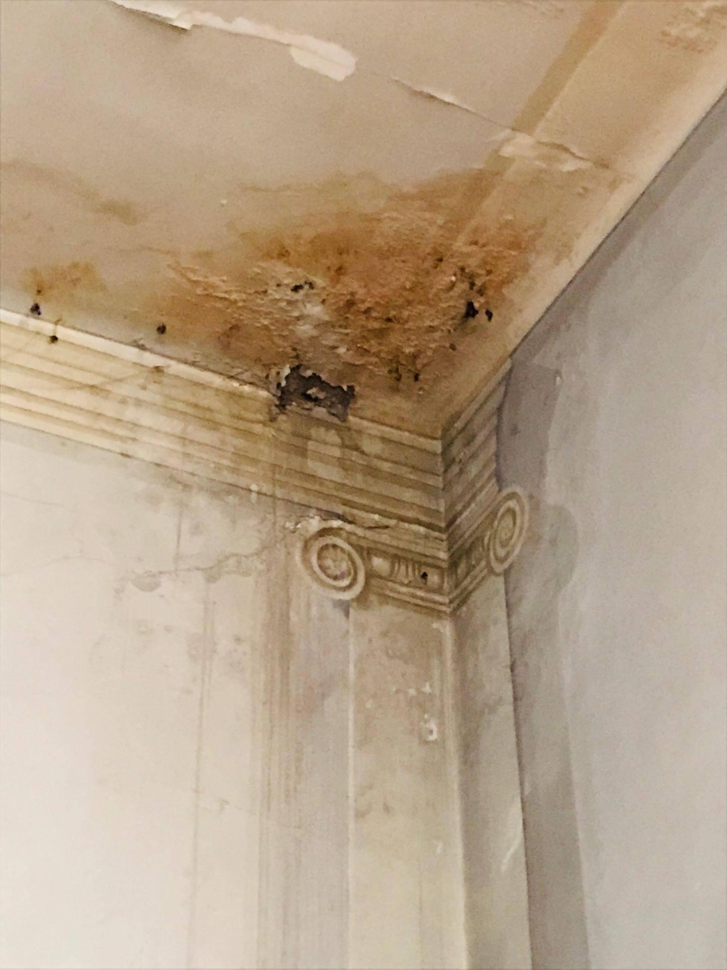 Traces d'humidité, peinture écaillée, morceaux de mur détachés, fissures: la dégradation est effarante.