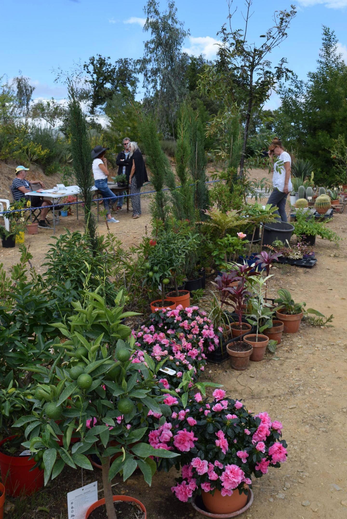 Les visiteurs ont un grand choix de plantes et de fleurs.