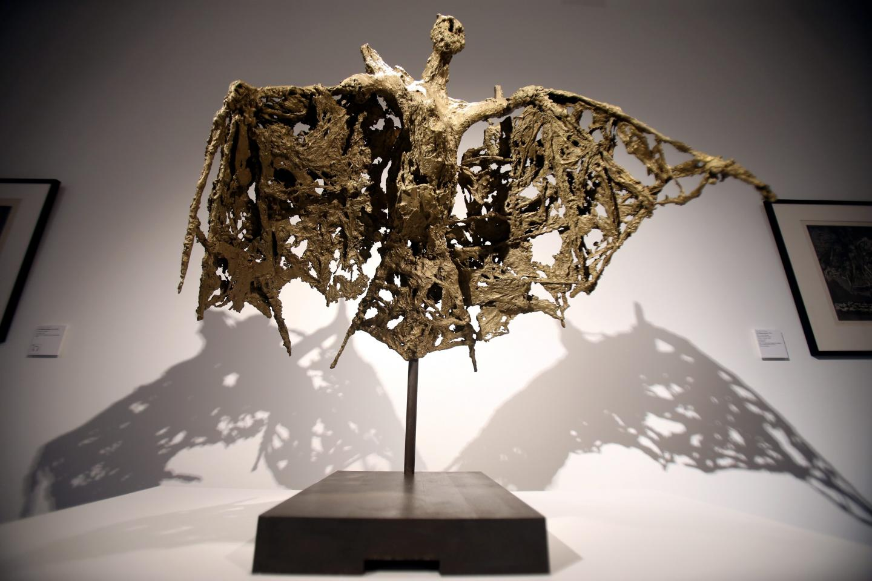 La Chauve-Souris aux ailes dentelées.