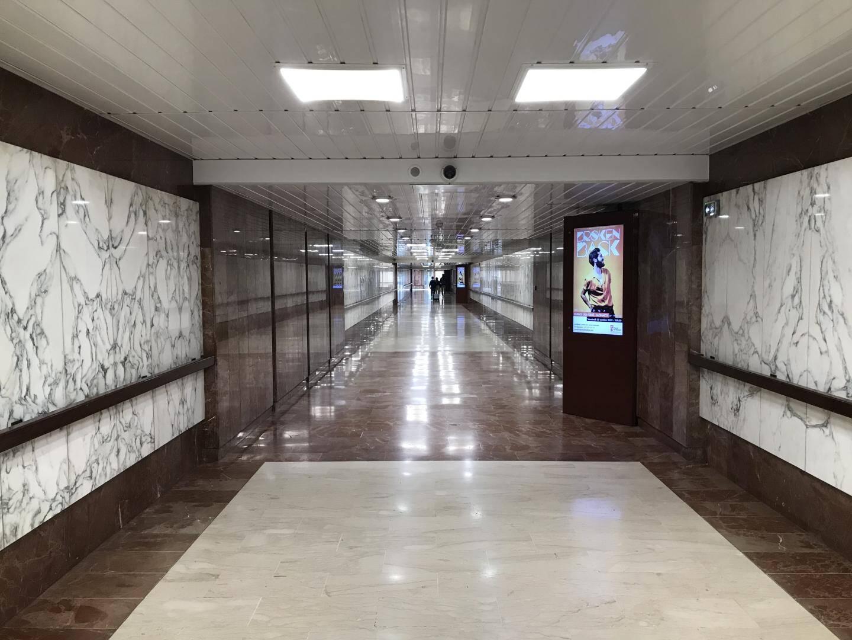 Les couloirs, habituellement bondés, sont désertés.
