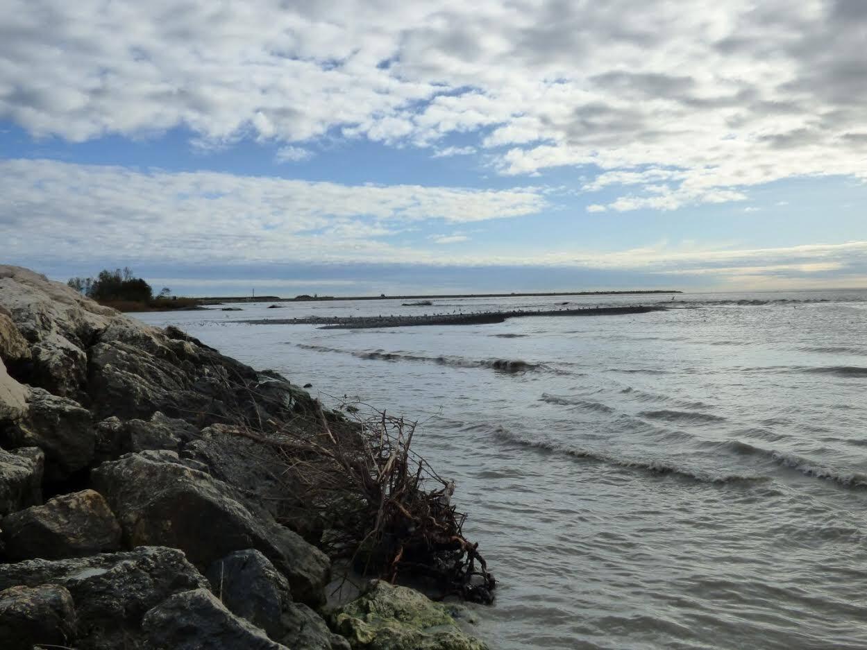 A l'embouchure du Var à Saint-Laurent, de nouveaux ilôts de galets se sont formés. A l'emplacement de l'arbre couché à l'arrière plan, il y avait encore 5 m de profondeur d'eau il y a quelques jours !