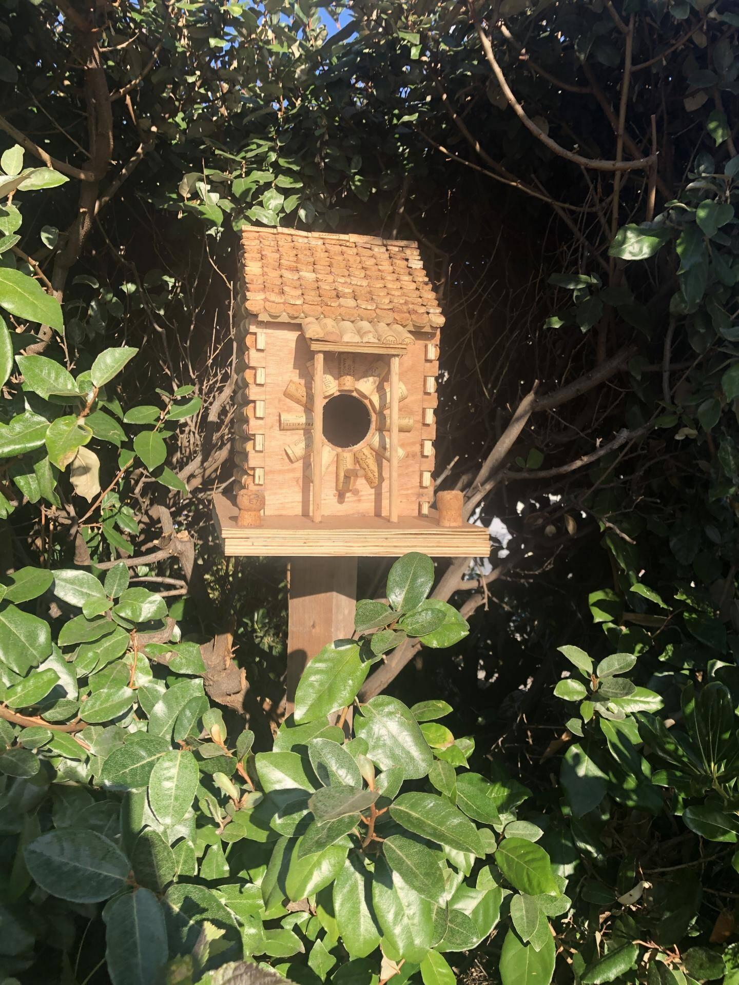 La cabane à oiseaux.