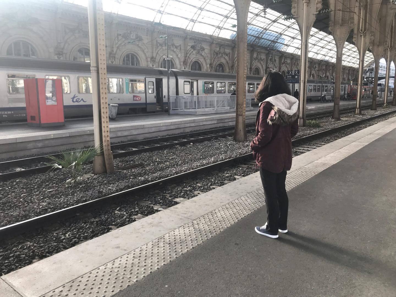 De grosses perturbations sont attendues sur le réseau SNCF : aucun TGV ne circulera entre Nice et Marseille. 12 TER  assureront la liaison entre Cannes et Nice, 14 entre Nice et Vintimille. Entre Les Arcs et Cannes, Cannes et Grasse ou Nice, Breil et Tende, seuls des autocars de remplacement sont prévus.