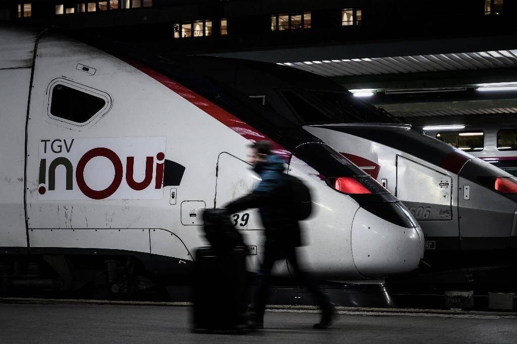 Des TGV à quai à la gare de Lyon au 16e jour de la grève contre la réforme des retraites, le 20 décembre 2019 à Paris