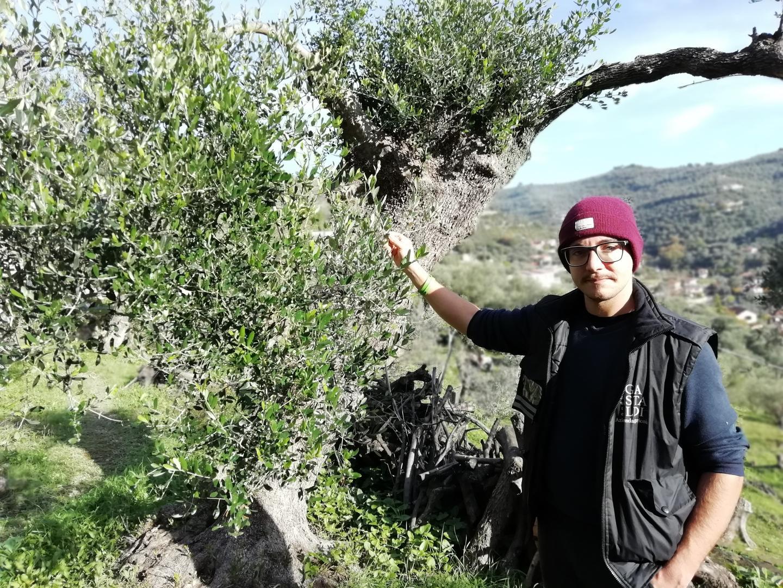 Christian Gastaldi a 26 ans et produit de l'huile d'olive depuis six ans.