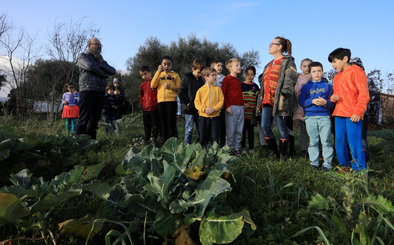 Coralie Sohala, animatrice municipale de la parcelle pédagogique, infatigable pédagogue de la cause environnementale, explique aux enfants les variétés qui poussent sur le potager.