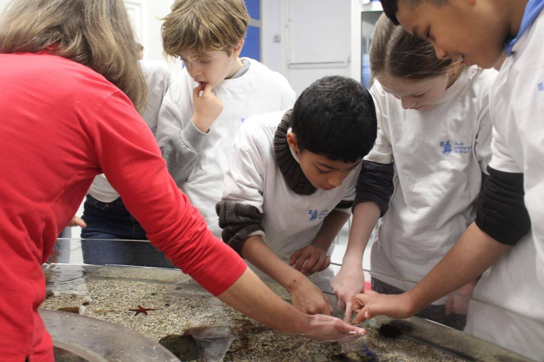 Le terme « snapper » du concours « Snapper pour tous » désigne un poisson originaire d'Afrique du sud, choisi par la princesse Charlène de Monaco, à l'initiative de ce projet.