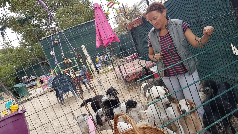 Le refuge animalier de Sanary, dirigé par Véronique, subit de plein fouet le confinement.