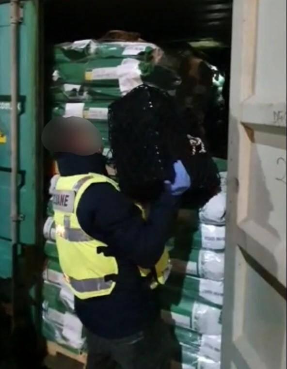 Au total, 250 paquets ont été récupérés, soit 290,9kg de cocaïne.