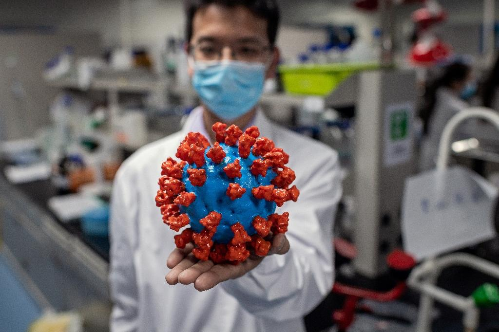 Un chercheur montre une maquette en plastique du nouveau coronavirus, au laboratoire contrôlant la qualité d'un vaccin expérimental de Sinovac Biotech, à Pékin le 29 avril 2020