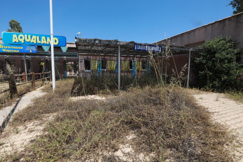 À l'entrée du parc, au niveau de la billetterie, les files d'attente ont laissé place à un enchevêtrement de broussaille.