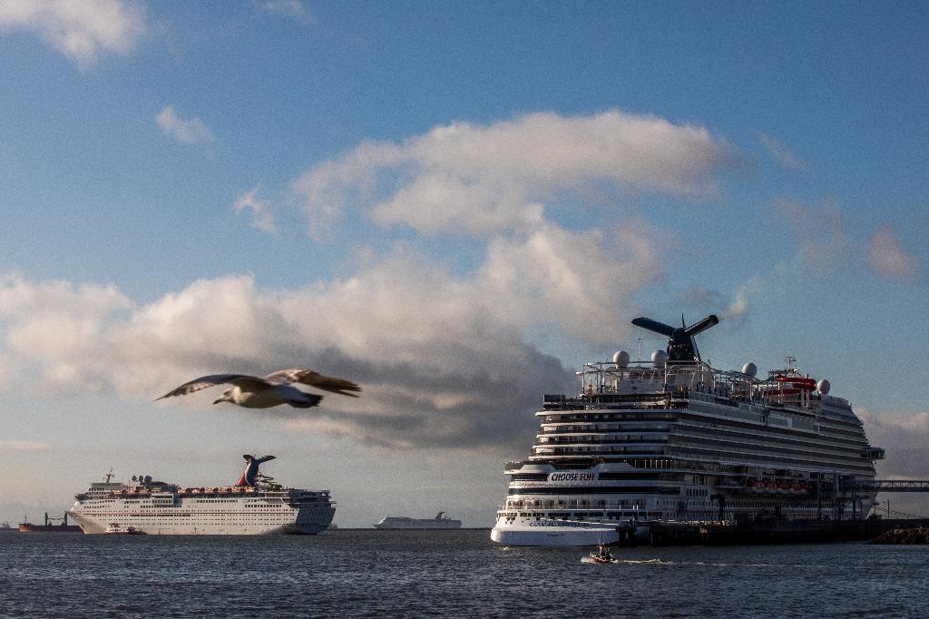 Des bateaux de croisières bloqués par la pandémie de coronavirus, le 11 avril 2020 près du port de Long Beach, en Californie