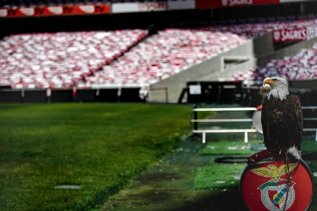 La mascotte de Benfica, l'aigle Vitoria, au bord de la pelouse du Stade de la Luz à Lisbonne le 17 juin 2020.