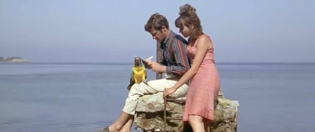 La célèbre scène avec le perroquet.