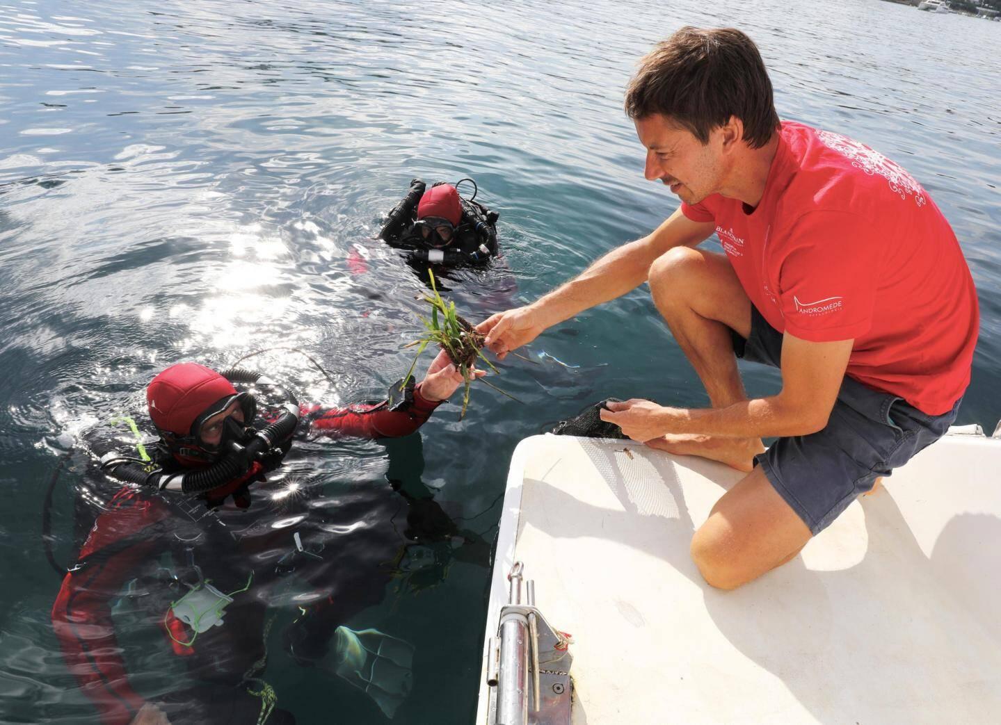 Les plongeurs se relaient au long de la journée