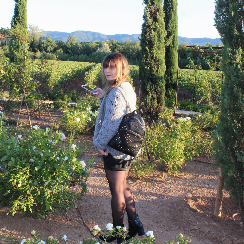 Coucher de soleil sur les vignes et la roseraie.