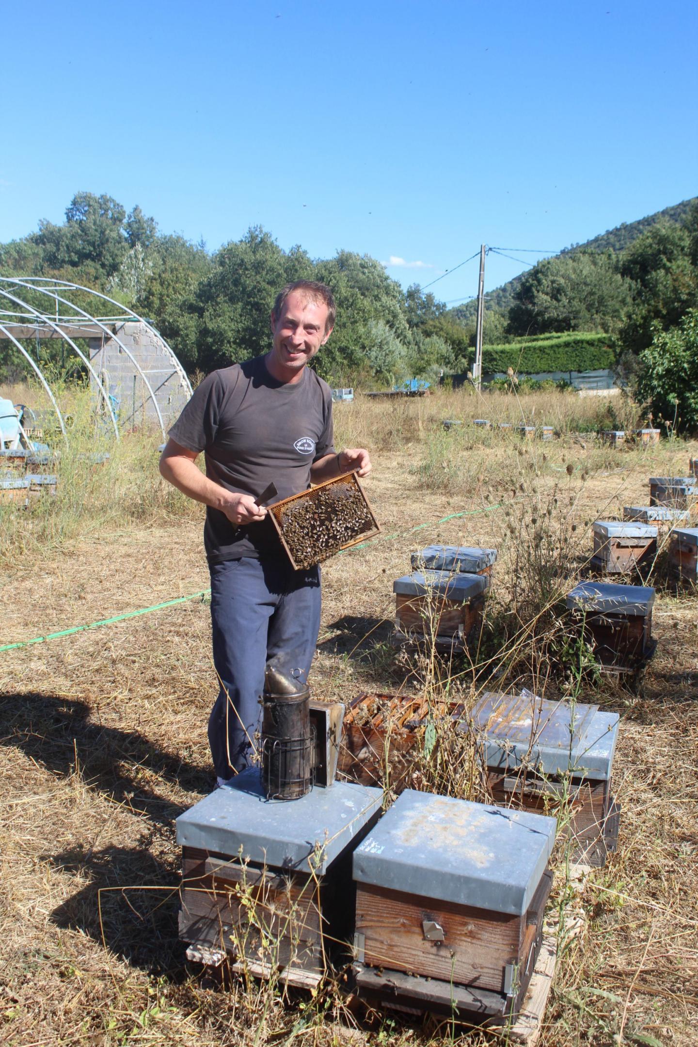 Frédéric a réhabilité l'ancienne bergerie des frères Hugues. Sur le terrain, il a implanté 600 ruches.