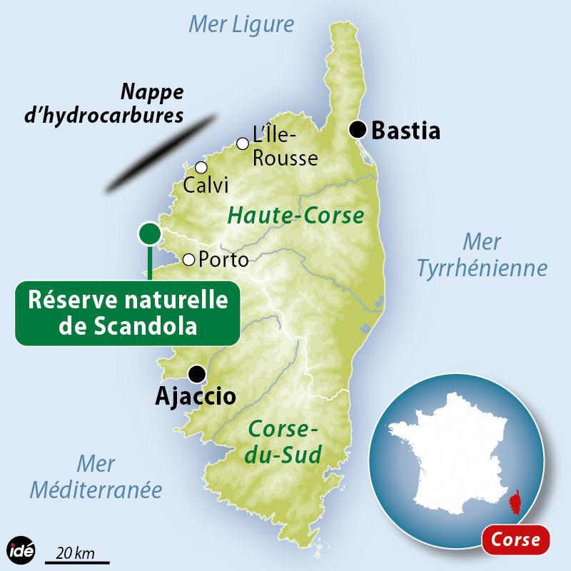 Importante pollution d'hydrocarbures au large de Scandola en Corse.