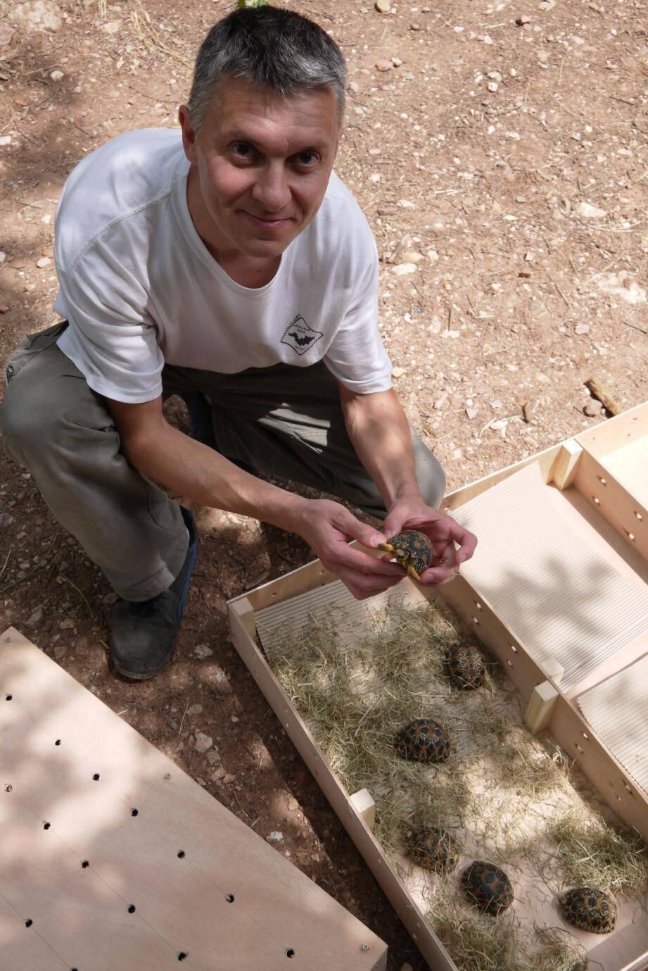 Stéphane Gagno peut etre fier. Après 6 mois en soins au Village, ces tortues de Madagascar vont retrouver leur habitat naturel.