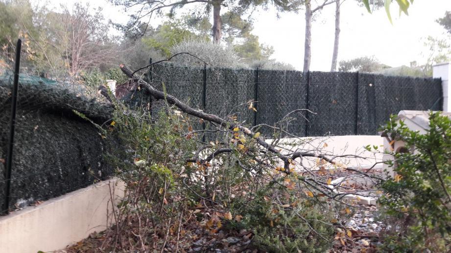 Chemin de Montmeuille, la clôture d'un riverain a été également touchée. L'électricité a été coupée de 20 heures, heure de la chute, à 4 heures.