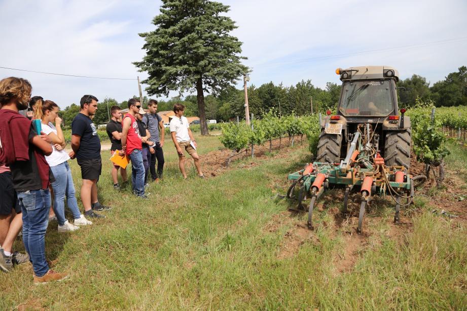 Domaines et entreprises de Provence reçoivent régulièrement des jeunes issus de filières viticoles. Ici, une visite d'étudiants en BTS viticulture au domaine de La Fouquette, aux Mayons.