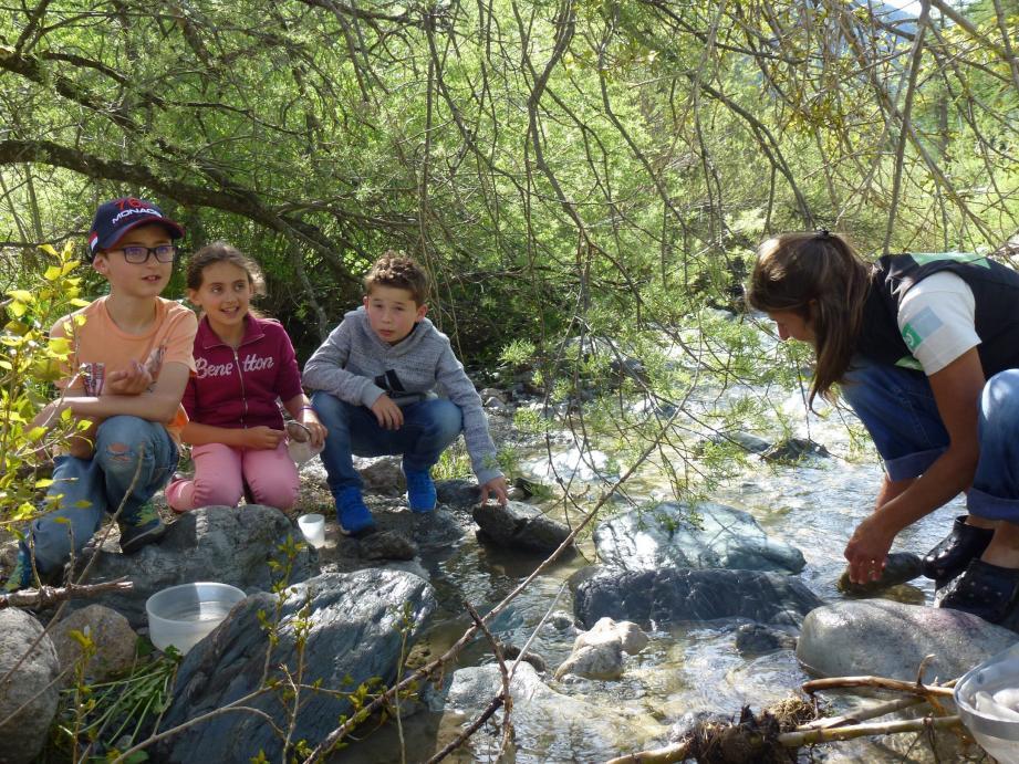 Avec Gaëlle (PNM) Baptiste, Melina et Luca ont découvert les trésors cachés de la rivière.