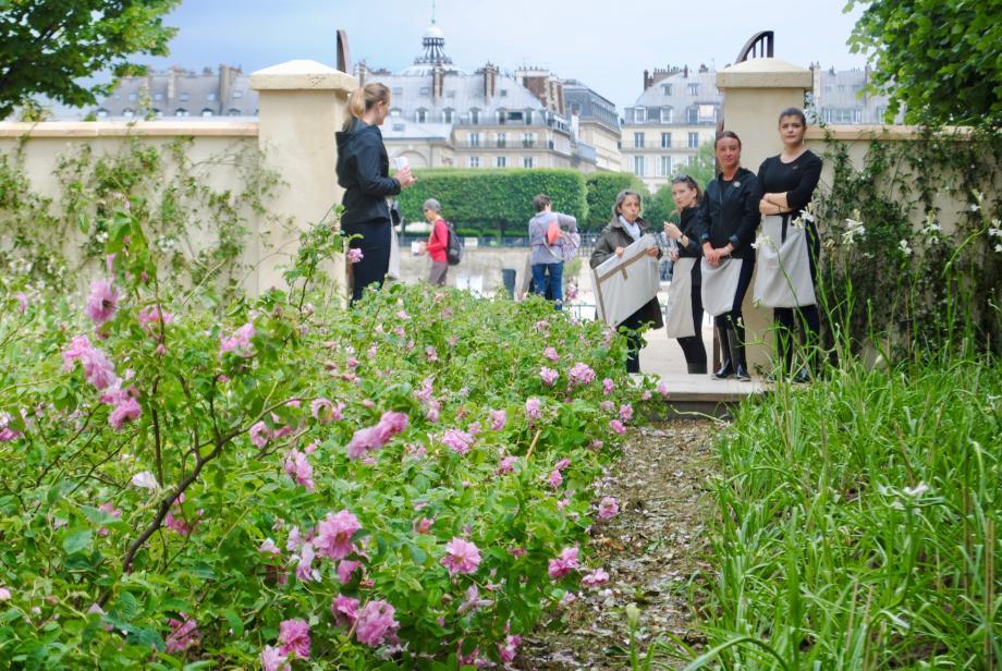 Dans le cadre de la manifestation Jardins, jardin, aux Tuileries, jusqu'à dimanche soir, la maison parisienne recrée les champs de plantes à parfum azuréens. Un hommage au savoir-faire des Mul