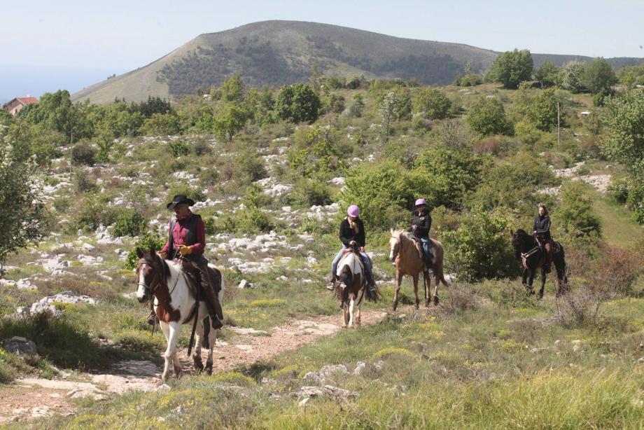 Actuellement, le site du col de Vence accueille des ranchs qui proposent des balades à cheval, un snack et une maison.