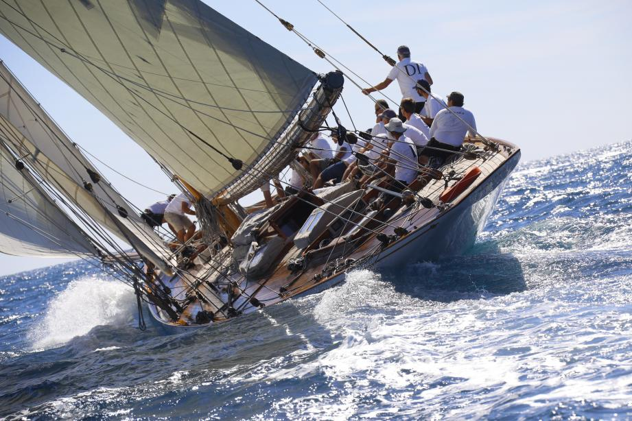 Cette année en baie de Cannes, port d'arrivée de l'ex-Panerai Classic Yachts Challenge, il y aura davantage de bateaux.