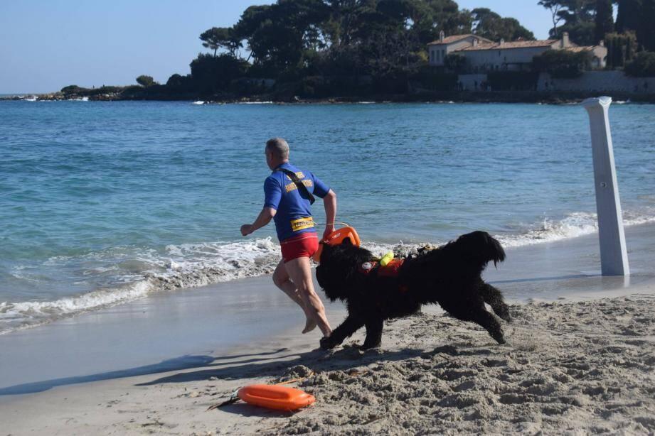 L'association Terre-neuve 06 présidée par Jean-Christophe Meyer, déboule sur les plages antiboises et s'entraînera notamment à la Salis. (DR) )
