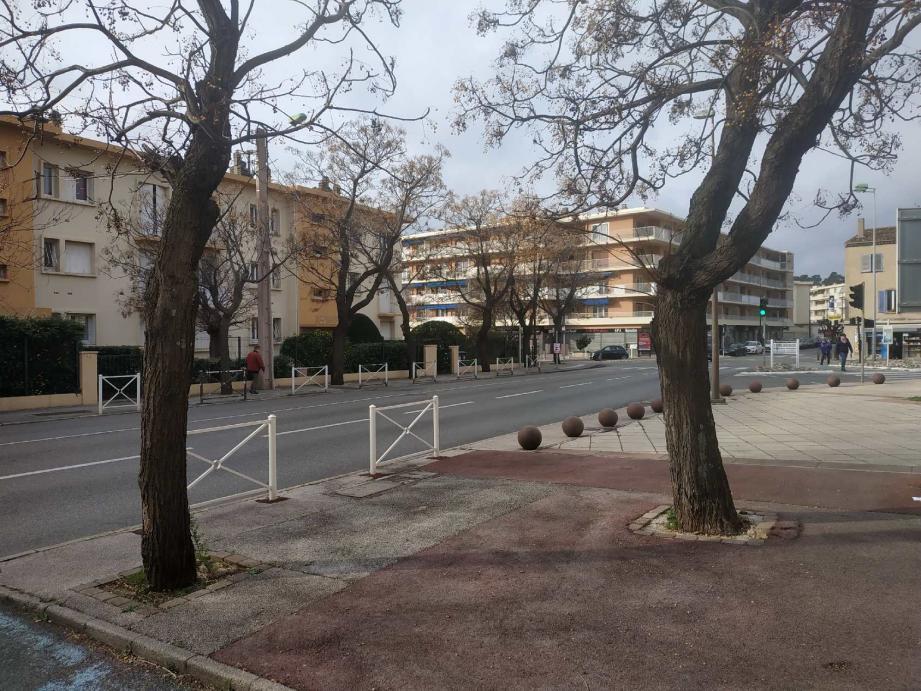 Plusieurs doléances concernent l'avenue Georges-Clemenceau : des riverains souhaitent une réduction de la vitesse autorisée, d'autres se plaignent des nuisances générées par les arbres…