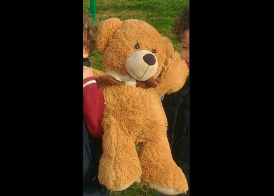 Lundi matin, sur le bord de mer à Cagnes-sur-Mer, un joli ourson en peluche, mascotte d'une classe de maternelle originaire de Grenoble, a disparu.