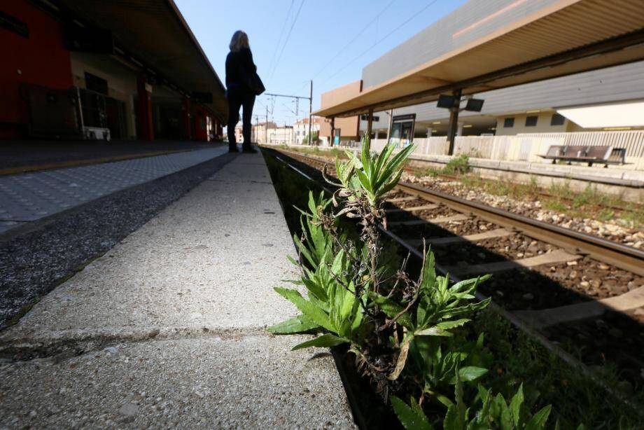 La SNCF a porté une « très forte attention » à la désinfection des trains et des gares. Le trafic, appelé à monter en puissance, va d'abord se concentrer sur les lignes les plus fréquentées.