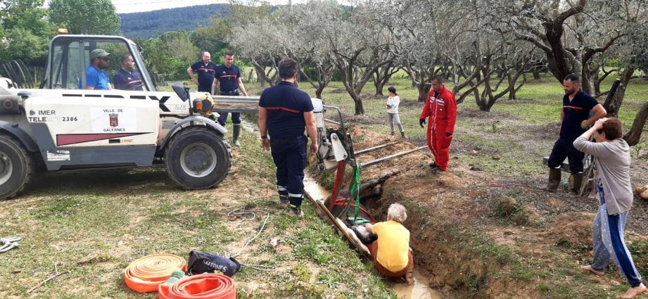 Les pompiers venus en nombre ont réussi à secourir l'animal.