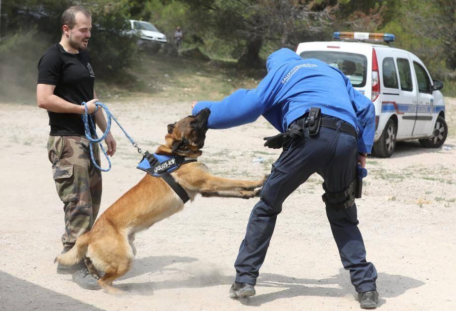 """La technique du """"mordant"""" n'est utilisé qu'en cas de légitime défense, quand un individu est armé par exemple."""