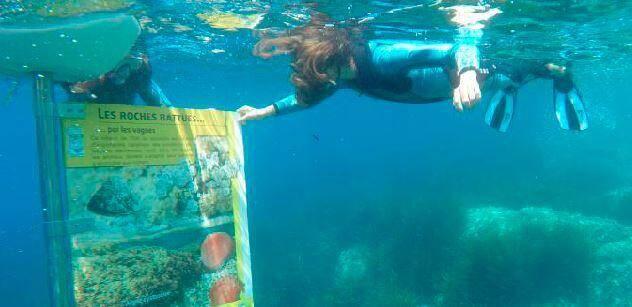 À la découverte des panneaux pédagogiques des sentiers marins.
