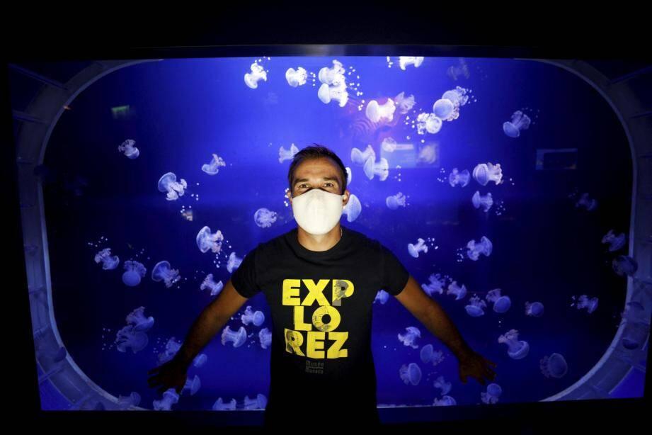Thomas Richard est en charge des méduses au Musée océanographique. Il en connaît un rayon sur ces étranges animaux.