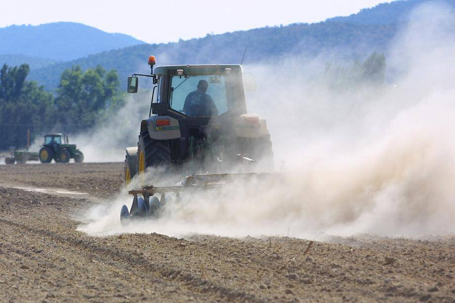 Les fortes chaleurs et le manque de pluie font craindre un épisode de sécheresse fatal aux agriculteurs.