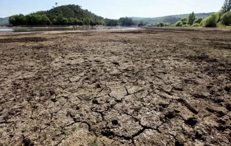"""""""D'un point de vue pluviométrique, il s'agit d'une année moyenne avec près de 350 mm comptabilisés à la fin août. Si les pluies d'automne sont au rendez-vous, il ne devrait pas y avoir de déficit."""""""