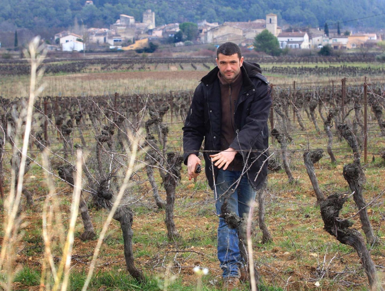 « Le travail du vigneron sera récompensé » , souligne Fabien Mistre, vigneron à Correns.