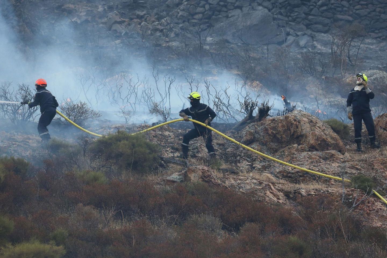 Hectares brûlés  à Calenzana - 27056732.jpg