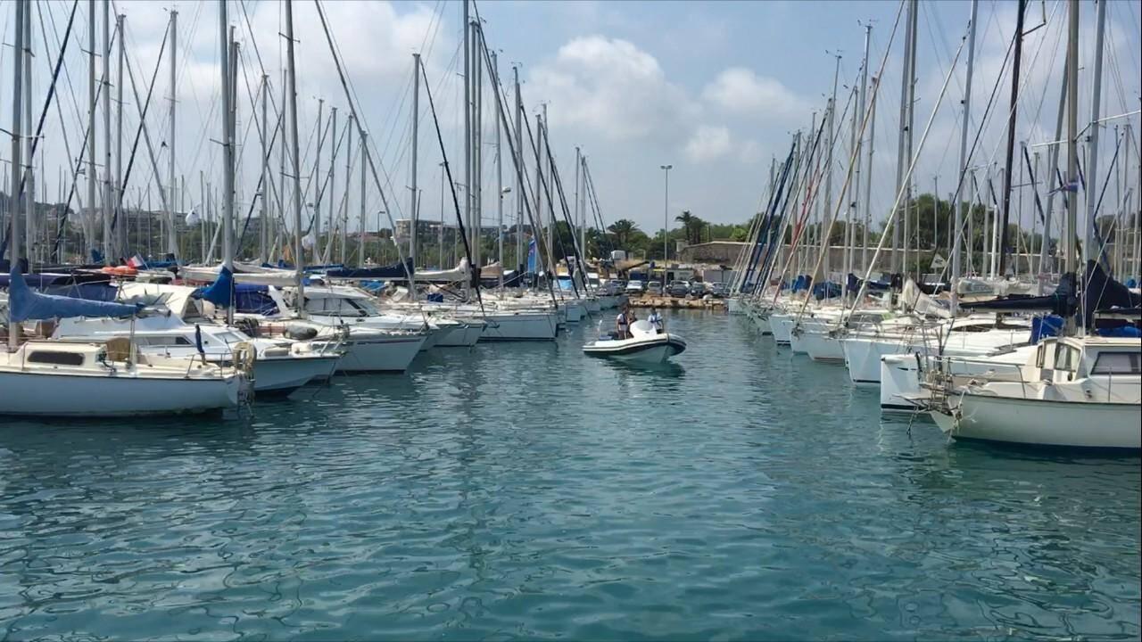 L'appli recence aujourd'hui 230 ports, principalement en France, dont 12 sur le littoral azuréen et 19 dans le Var.