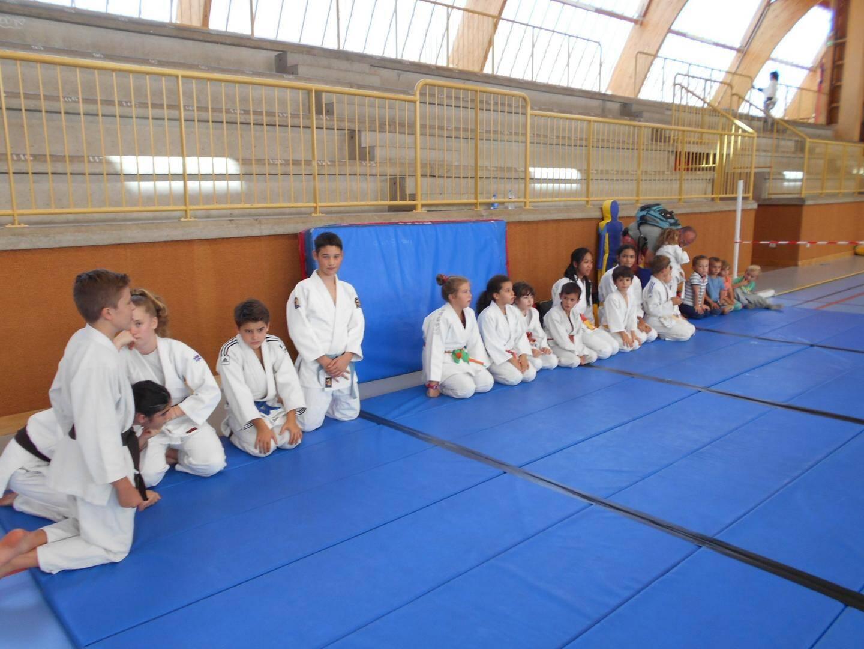 Les démonstrations, comme ici le judo ont permis de se décider.
