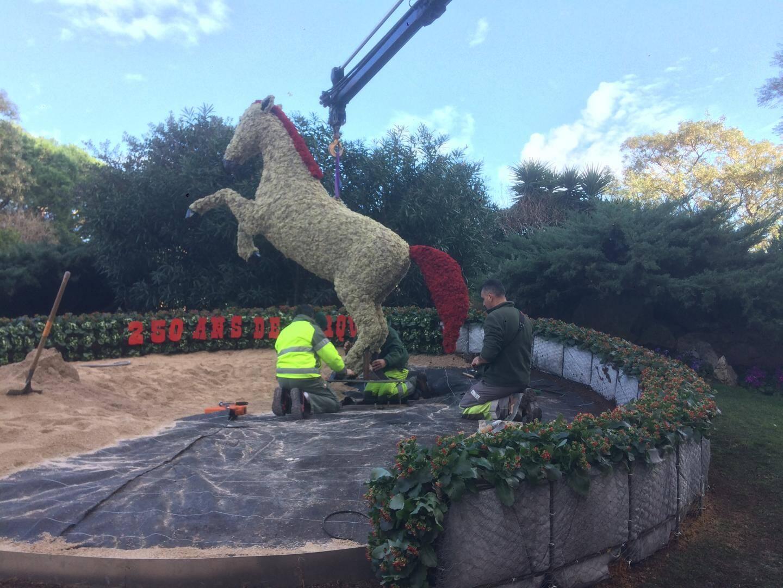 Le cheval fleuri sera mis en lumière chaque nuit pour les spectateurs du cirque.