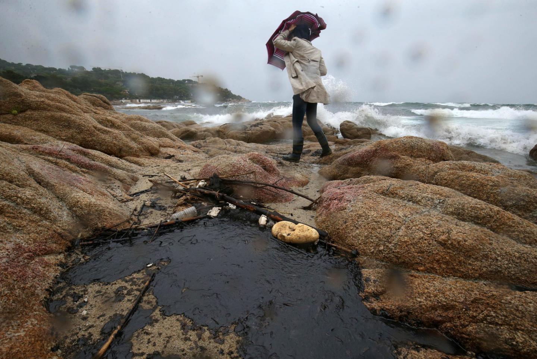 Le littoral varois souillé par la pollution à l'hydrocarbure.