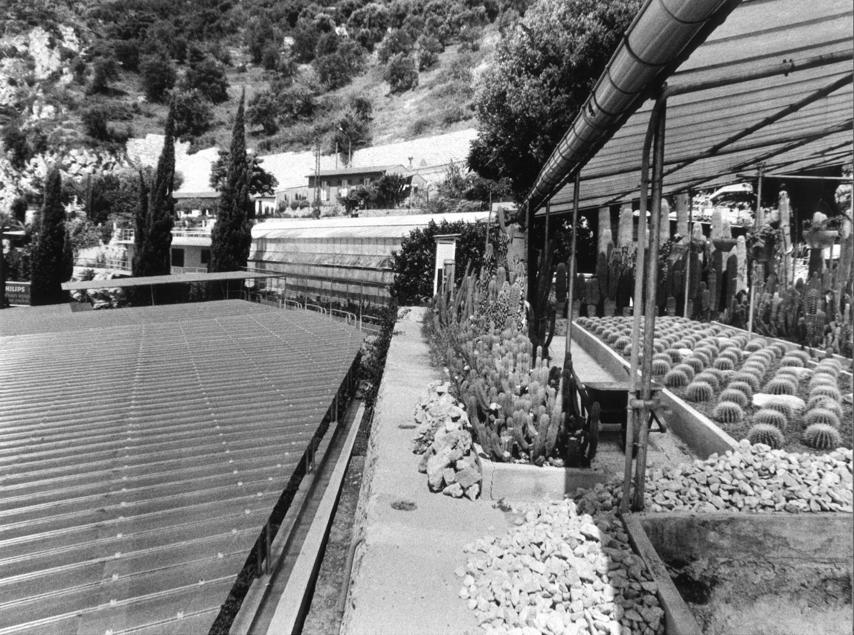 Quand le centre a déménagé des anciennes serres (photgraphiées ici dans les années 70), il a perdu en espace, mais gagné en confort, en technologie, et en performances scientifiques.