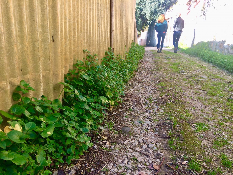 À Garavan, la Via Julia longe la voie ferrée au niveau du sentier des Cuses de Menton, traverse la villa Maria Serena avant de descendre vers la frontière.