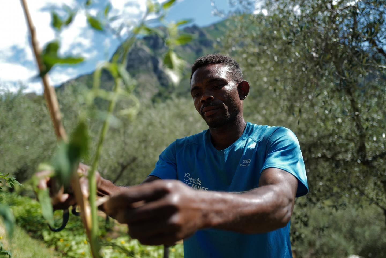 Atairu, demandeur d'asile nigérian, cultivait déjà la terre dans sa vie d'avant.
