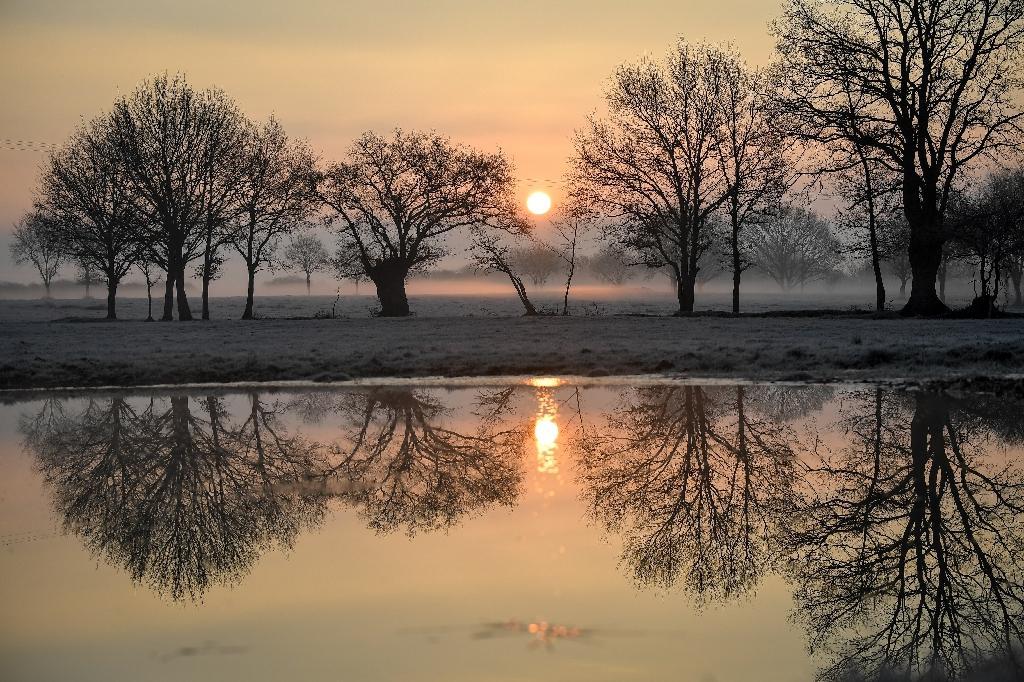 Lever de soleil sur la campagne givrée près de Lavau-sur-Loire (ouest de la France), le 21 janvier 2019