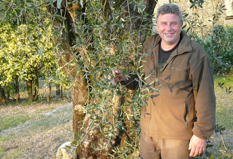 Jean-Philippe Frère, oléiculteur au Rouret.